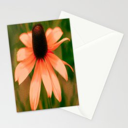 Vibrant Orange Coneflower Stationery Cards