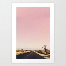 southwestern desert photo Art Print