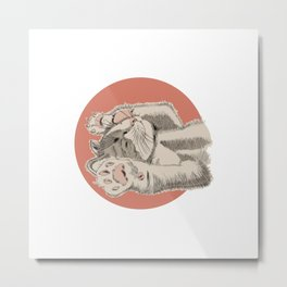 Lovely Sleepy Kitten Belly Up Metal Print