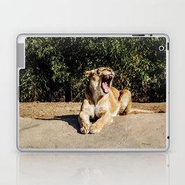 Lioness Growling Laptop & iPad Skin