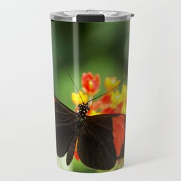 Beautiful buterfly, insect on green nature floral background, photographed at Schmetterlinghaus, But Travel Mug