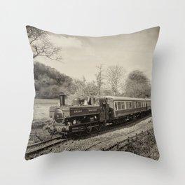 Dart Valley Steam  Throw Pillow