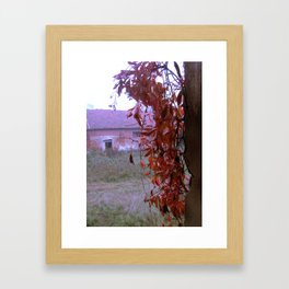 The Leaves Framed Art Print