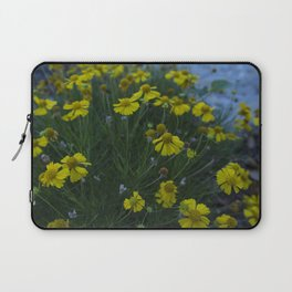 Fairness and Synthesis II.- by me jjv. Laptop Sleeve