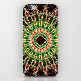 Mandala India Style 3 iPhone Skin