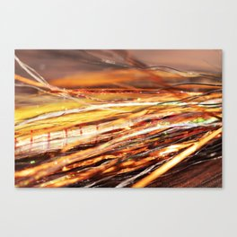 Fly tying Canvas Print