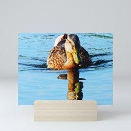 Duck Encounter Mini Art Print