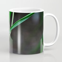Spiral of the Universe Coffee Mug