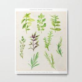 Watercolor Herbs Metal Print