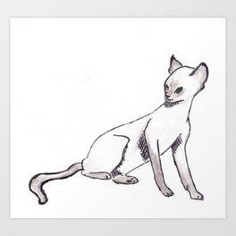Cornish Rex Art Print