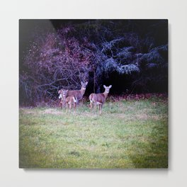 The Dear Deer Family Metal Print