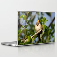 swallow Laptop & iPad Skins featuring Singing swallow by Ria Pi