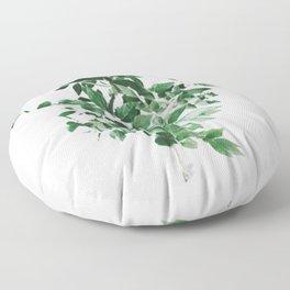 Seed Dreams Floor Pillow