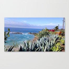 TREASURE ISLAND CACTUS Canvas Print