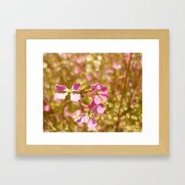 Fort Brag Flowers V Framed Art Print