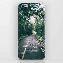River Valley Path iPhone Skin