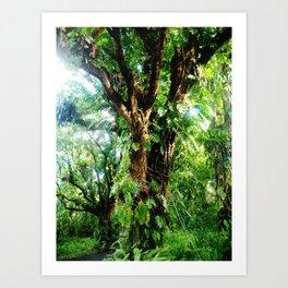 Vines of the Wild Art Print
