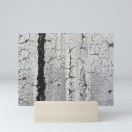 Urban Texture Photography - White Painted Asphalt Mini Art Print