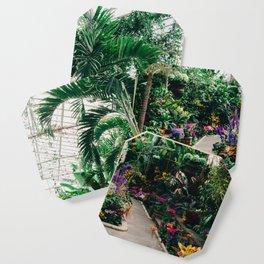 The Main Greenhouse Coaster