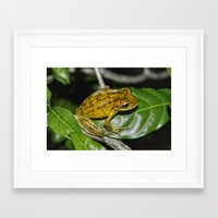 kermit Framed Art Prints featuring Kermit 2.0 by Glenn Forman
