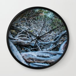 Petrified land Wall Clock