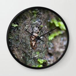 Lichen Moth Cocoon Wall Clock