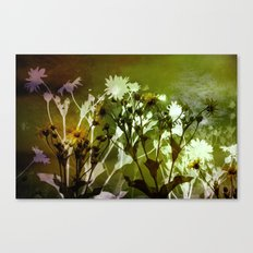 Flowers ..abstract  Canvas Print