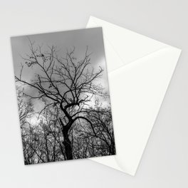 Witchy black and white tree Stationery Cards