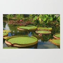 Waterlily Leaf Platters Rug
