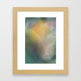 Paradise 5 Framed Art Print