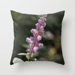 Purple wildflower in Dogtown Throw Pillow