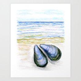 Blue mussel Art Print
