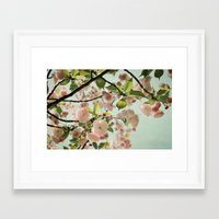 blush Framed Art Prints featuring Blush by Bella Blue Photography