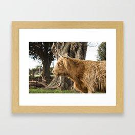 The Highlander Framed Art Print