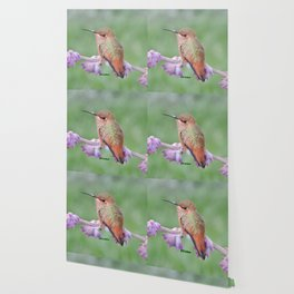 DO NOT Raid My Patch of Sage Wallpaper