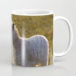 Cute little lambs Coffee Mug