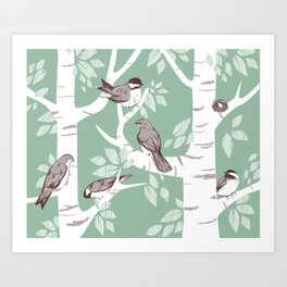 Birch Birds Art Print