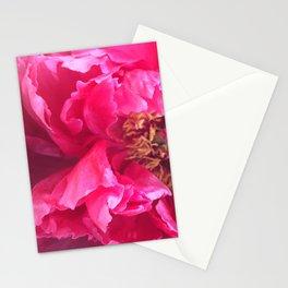 Flower II Stationery Cards