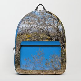 Tree Of Life 7289 Joshua Tree Backpack