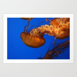 61010_jelly Art Print