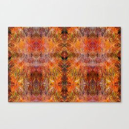 Abstract acrylic sunburst v1 Canvas Print