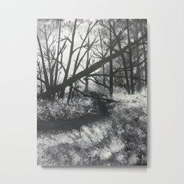 Tangled Woods Metal Print
