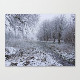 Walk in the Frost Canvas Print