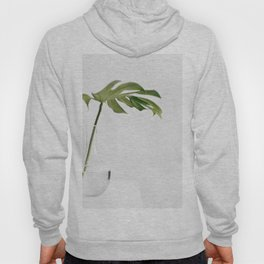 Single Monstera Leaf In Clear Glass Zen Minimalist House Plant Photo Hoody