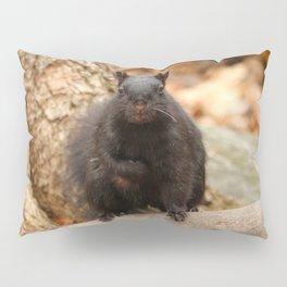 Do you love me Pillow Sham
