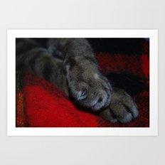 fuzzy feet Art Print