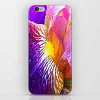 iris iPhone & iPod Skins featuring Iris by Robin Curtiss