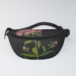 Phlox Undulata Mary Delany Floral Flower Paper Collage Delicate Vintage Black Background Botanical Fanny Pack