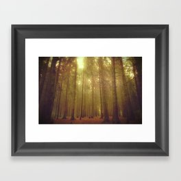 Our forest#2 Framed Art Print