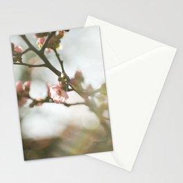 Vintage blossom Stationery Cards